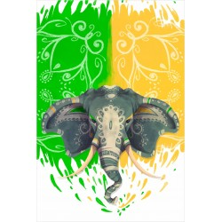 Estor Iroa Digital Elefante India